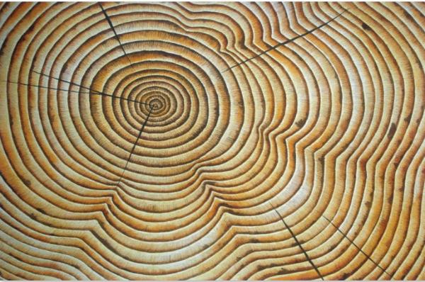 """Timeline VI,"" Artwork by Helen Klebesadel"